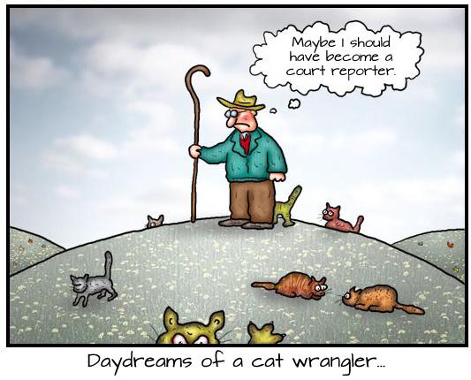 Court Reporter Wrangler